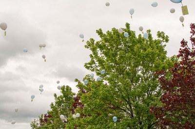 Ballons dans le ciel